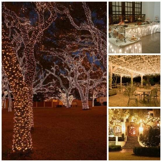wedding christmas lights