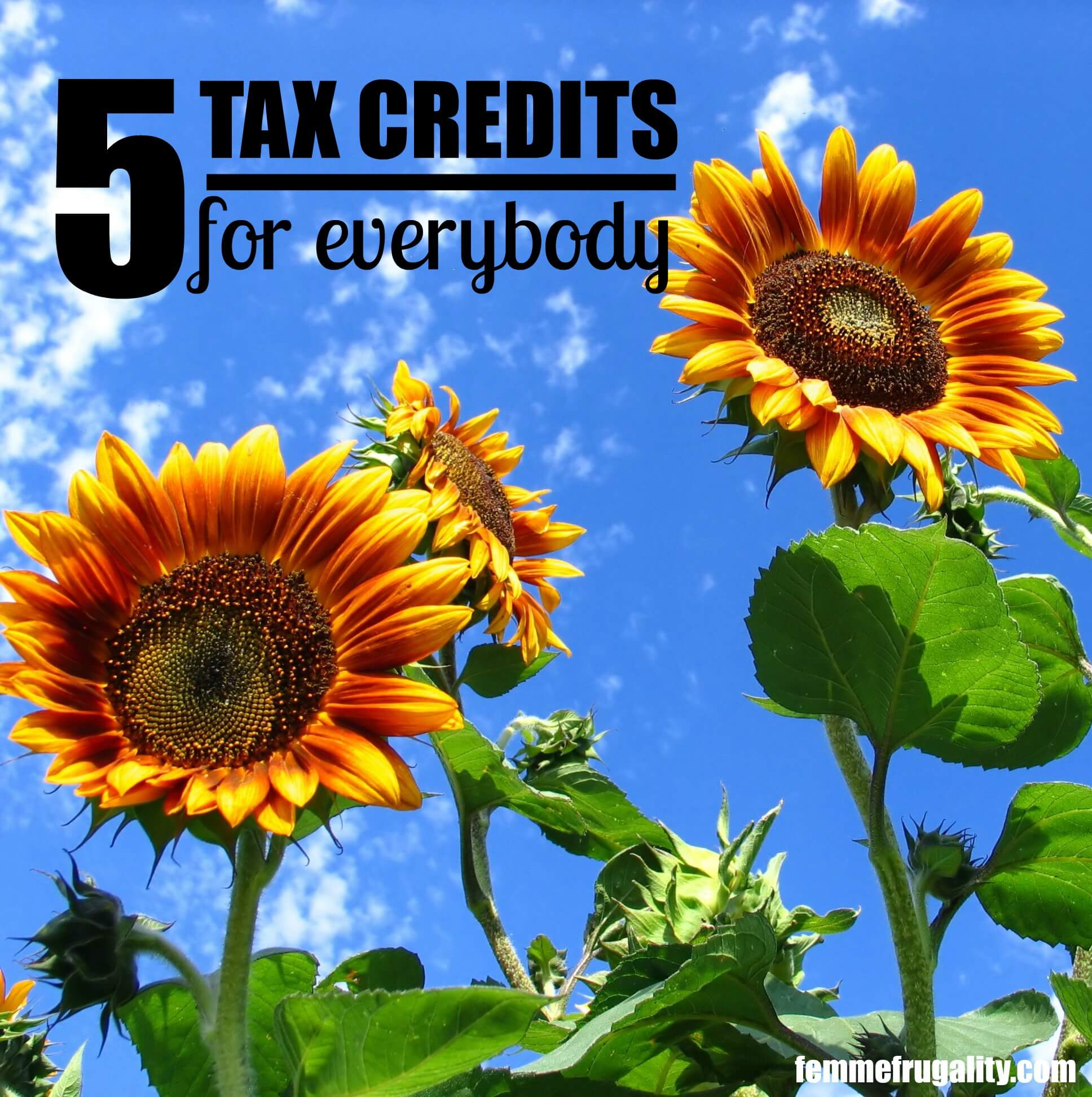 Are you filing for everything you qualify for? Here's 5 important credits to check out this tax season.