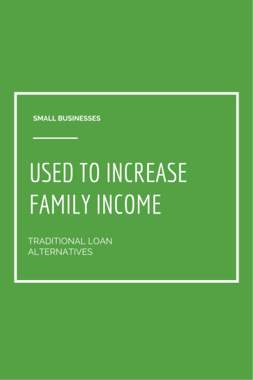 Small Businesses Used to Increase Family Income-Alternatives to Traditional Loans