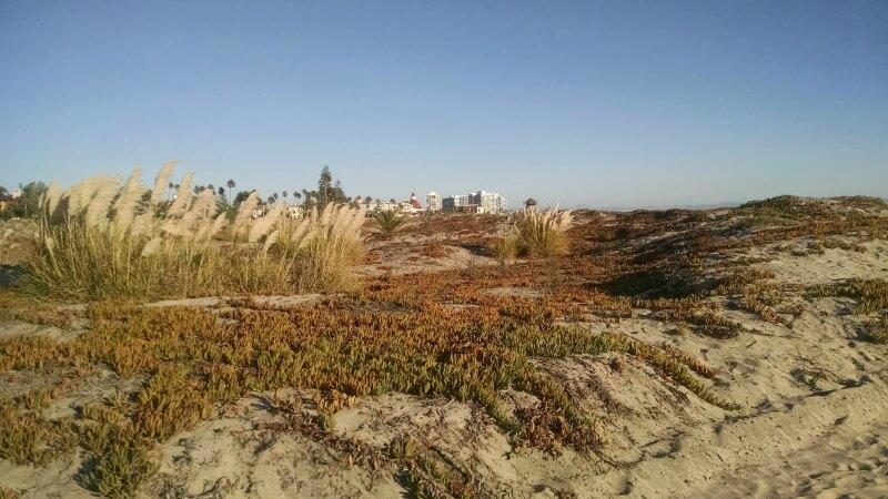 coronado-dunes