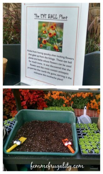 Kids get to plant their own flowers to bring home every Friday at Phipps!