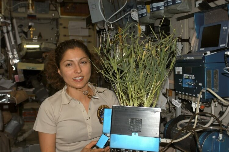 Anousheh Ansari--first female private space explorer