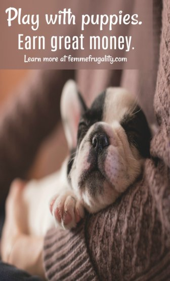 Holy moly can you earn some extra MONEY by dog-sitting adorable puppies! Signing up for this platform pronto!
