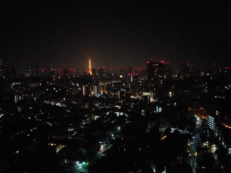 view from westin tokyo
