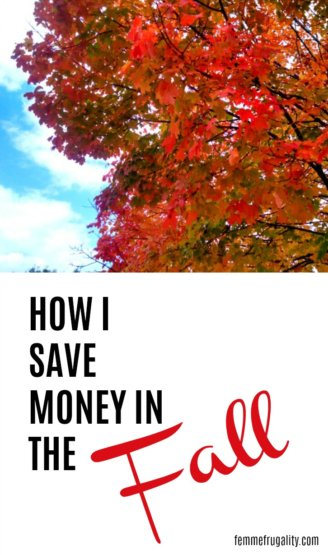 Pumpkin patches, halloween costumes, leaf piles and holiday shopping...so many ways to save money in the fall!