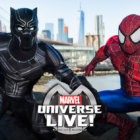 Spiderman and Black Panther