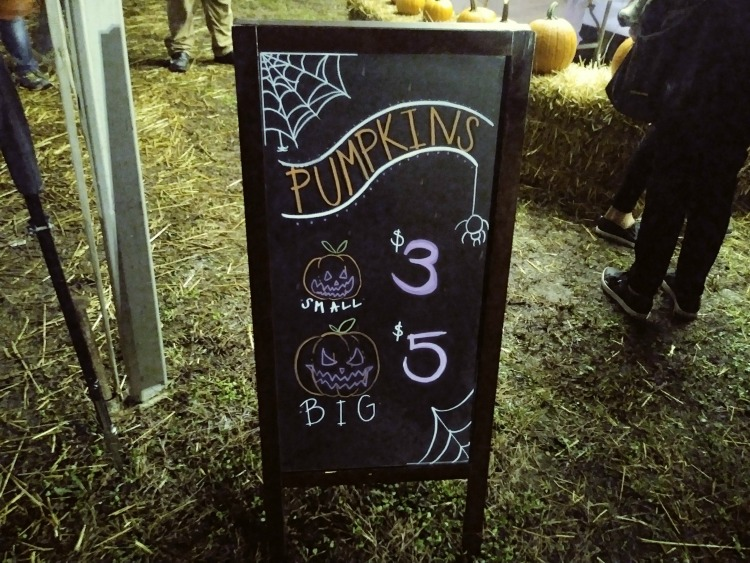 affordable pumpkin patch
