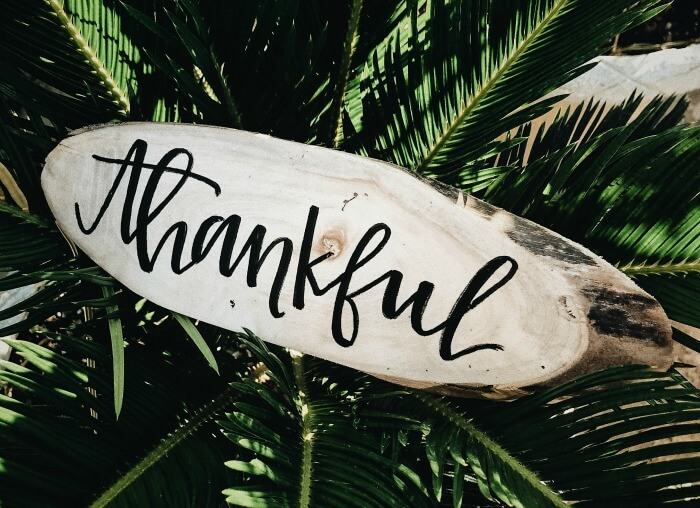 "In the middle of some palm leaves lies an oblong slice of wood. On it is written the word ""thankful"" in black cursive."