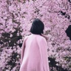 dark-haired girl walking towards a cherry blossom tree. Her coat is the same shade of pink as the flowers.